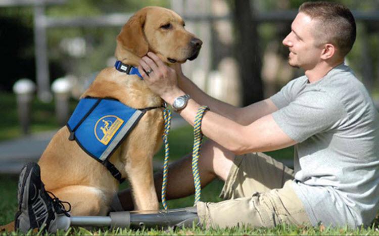 Service Dog Registry - Service Dog and Emotional Support