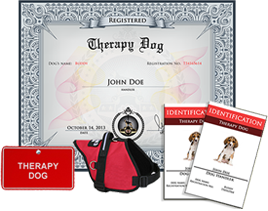 therapy dog kit