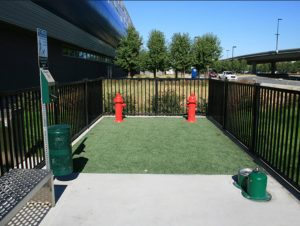 san jose airport pet relief area