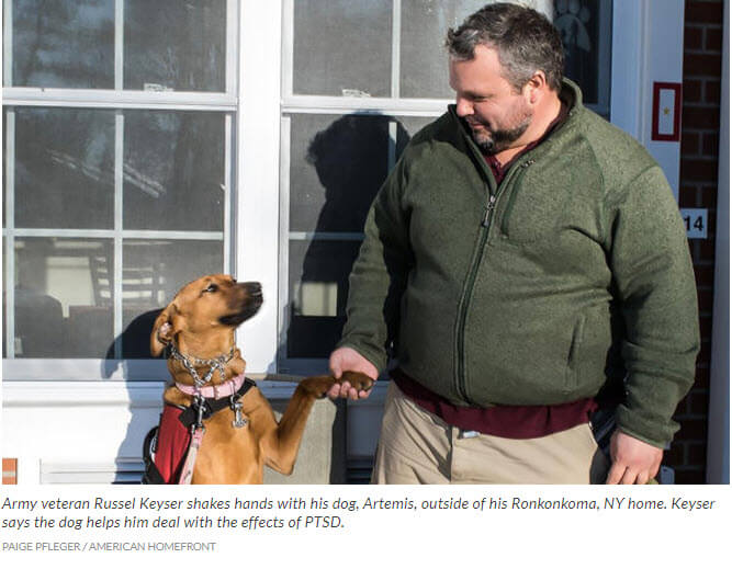 VA Studies Benefits of Service Dogs for Veterans Suffering from PTSD