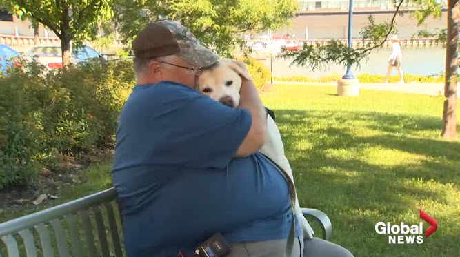 PTSD Service Dog Mentoring Program Starts in New Brunswick Canada