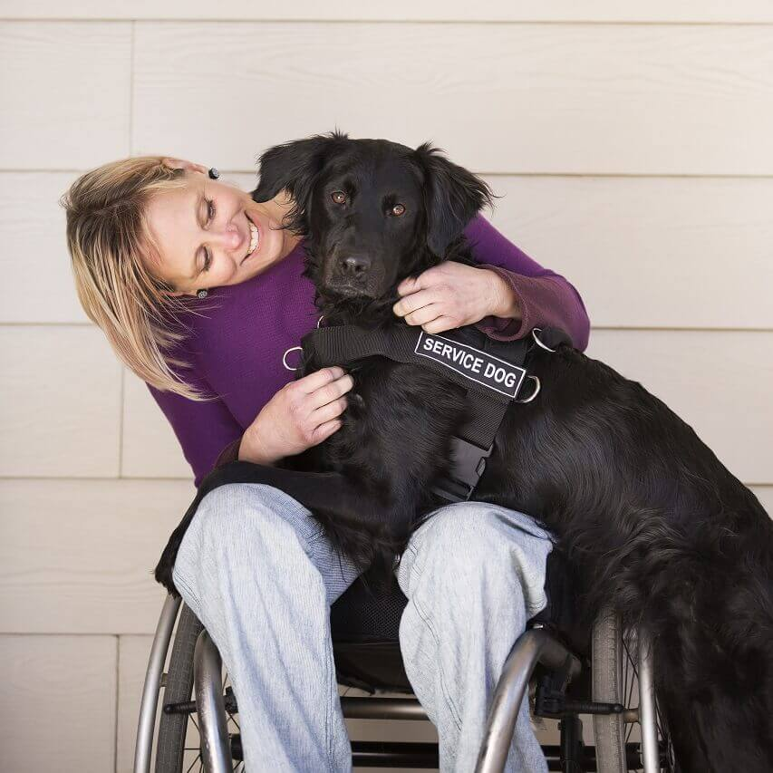 Ada Service Dog Registration