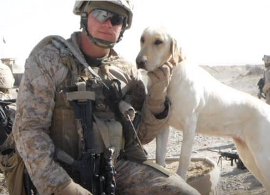 marine veteran service dog