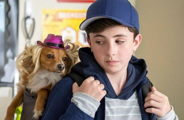 Netflix Features The Healing Power of Dude and Emotional Support Dog